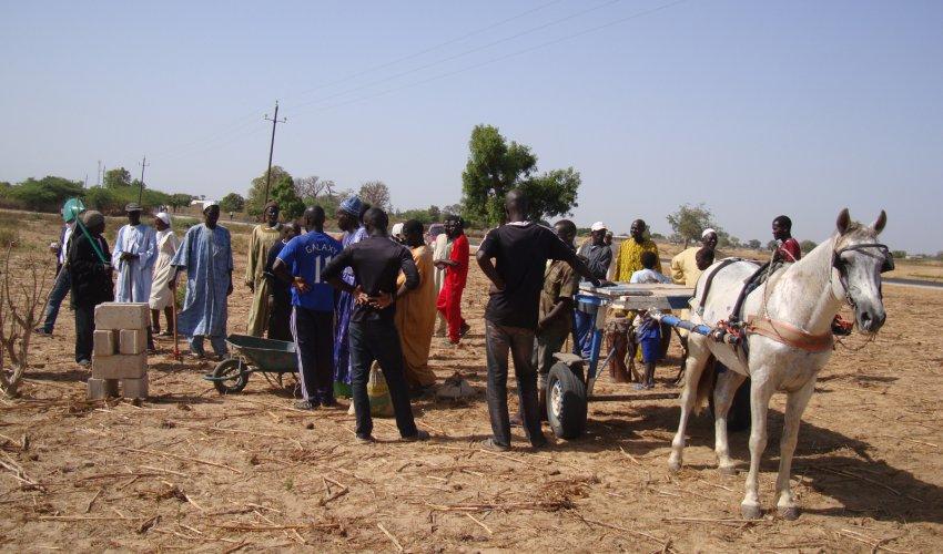 Perchè in Africa e in Senegal-5