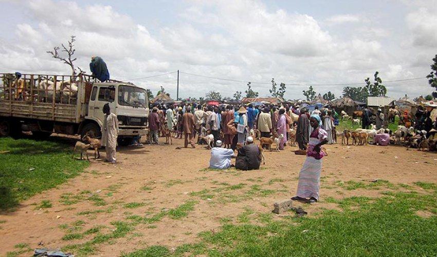 Altre foto dalla regione del Fatick in Senegal-5