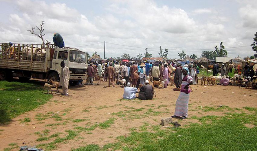 Altre foto dalla regione del Fatick in Senegal-3