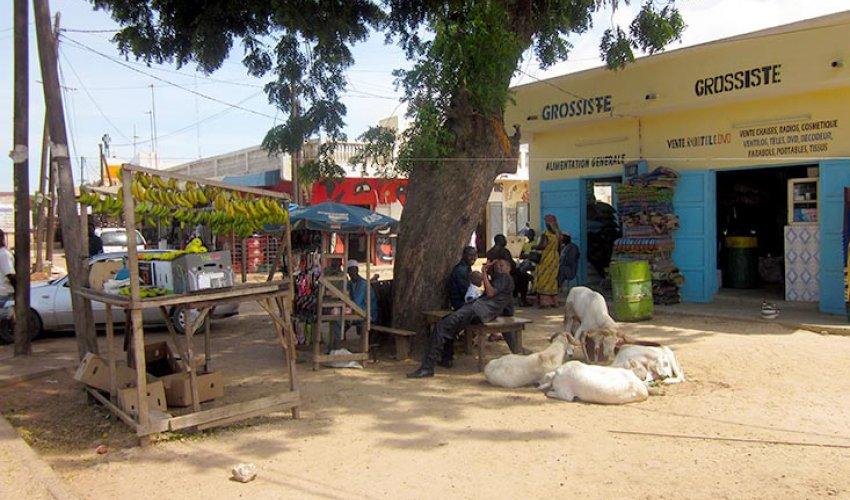 Altre foto dalla regione del Fatick in Senegal-6