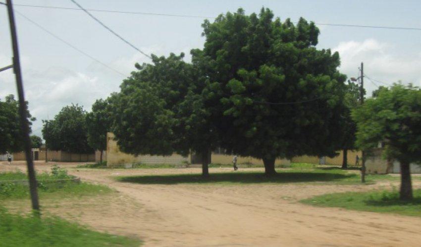 Altre foto dalla regione del Fatick in Senegal-11
