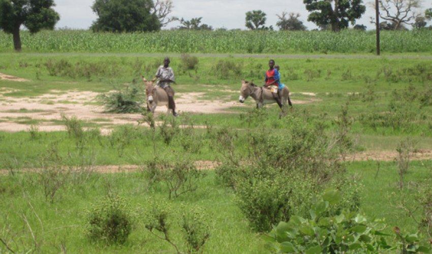 Altre foto dalla regione del Fatick in Senegal-12